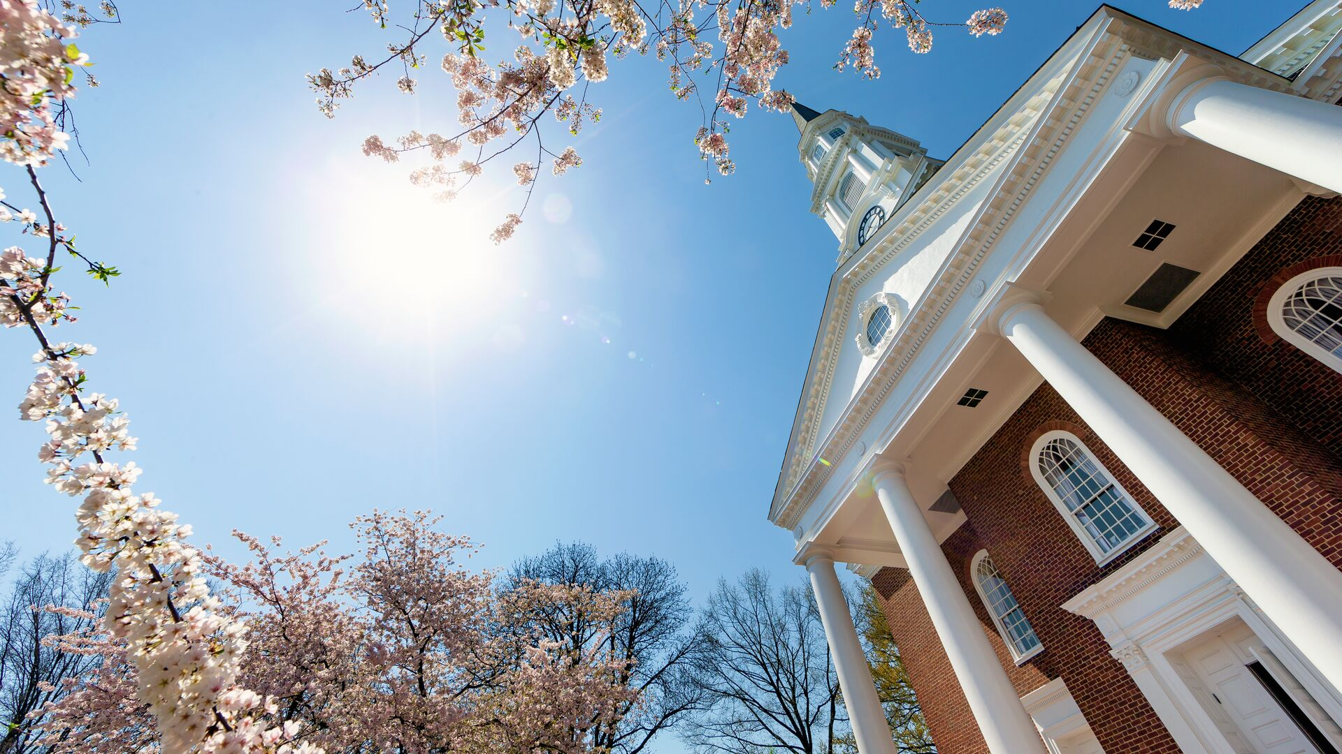 View of Memorial Chapel looking up from the ground through cherry blossoms with a blue sky.